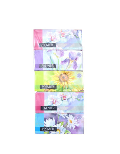 Picture of TISSUES.BOX(10X5BOX X170'S)PREMIER -2PLY