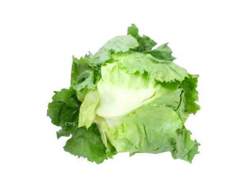 Picture of VEG-LETTUCE ENGLISH (500G)
