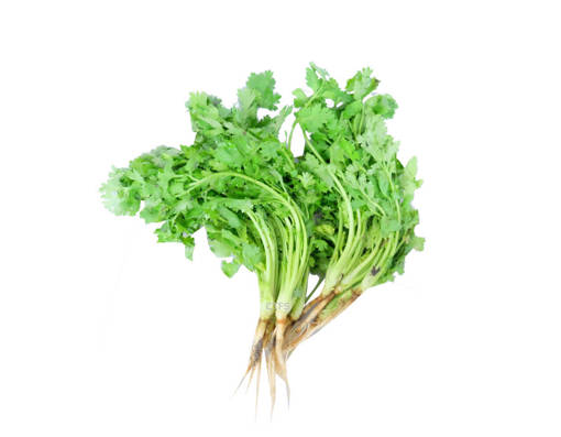 Picture of VEG-CHINESE PARSLEY(100G)