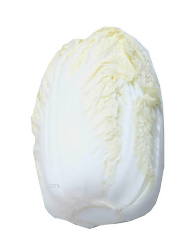 Picture of VEG-TIENTSIN CABBAGE(500G)LONG CABBAGE