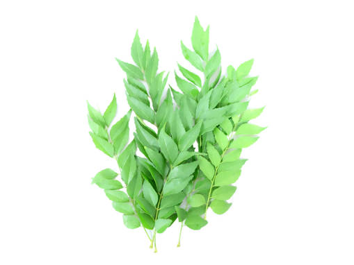 Picture of VEG-CURRY LEAVES (100G)