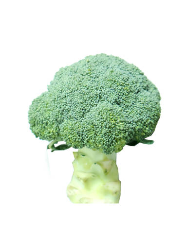 Picture of VEG-BROCCOLI (500G) FRESH